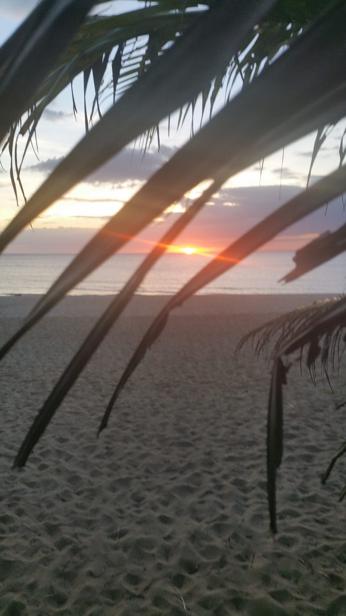 two best negros island resorts